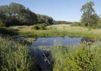 Jämmerlicher Wasserstand: kein Ende abzusehen