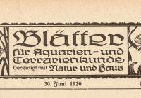 1920 … die Lobau und der Prater sehen grauenhaft aus