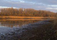 Dezember am Kühwörtherwasser