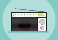 """Im Radio: """"Patientin Lobau – ein Auwald trocknet aus"""""""