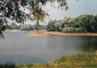 Das verlorene Paradies am Donaustrand