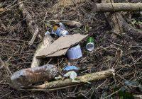 Müllablagerung – es hört nie auf