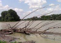 Untere Lobau: Hochwasser am 19. Juli 2021
